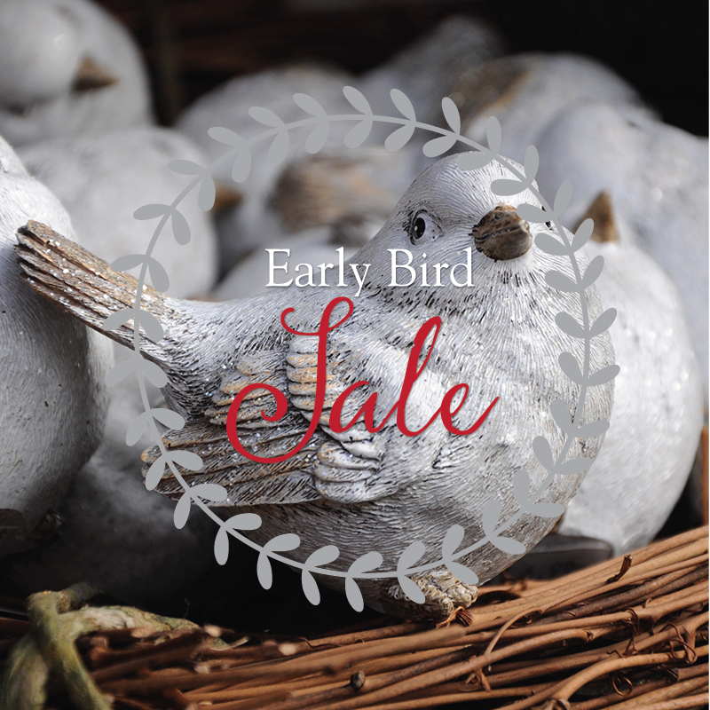 Holiday Early Bird Sale