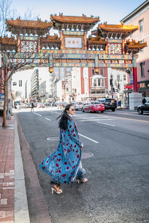 Johanna-Ortiz-velvet-robe-chinese-new-year-petite-flower-presents-1.jpg