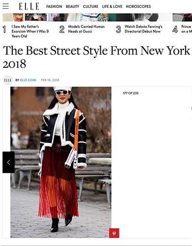 Petite Flower Presents NYFW FW18 Street Style Elle.png