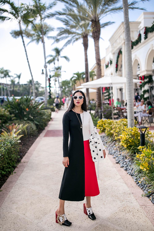 cherryblossomsdesign-color-block-dress-3.jpg