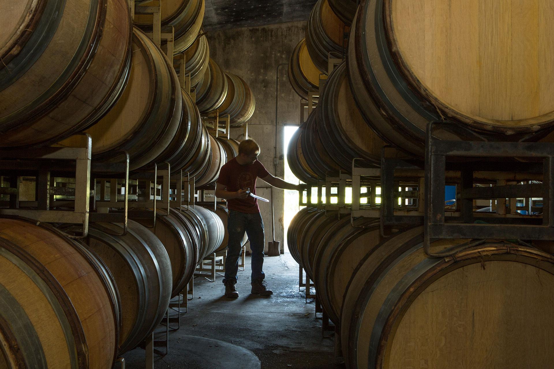 Bridgeview-Winery---Counterform-----02524.jpg