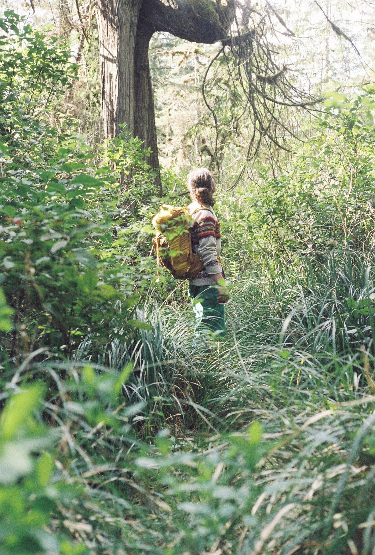 Jacob Swamp Walk 1.jpg