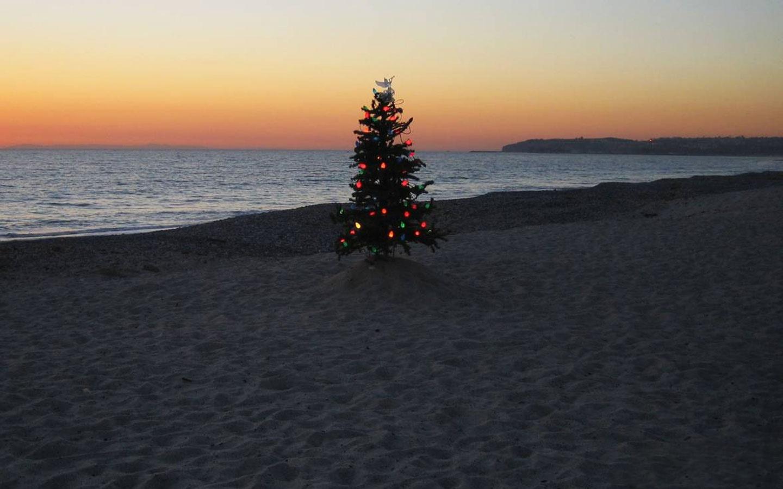 christmas-tree-on-beach-1440x900-154.jpg