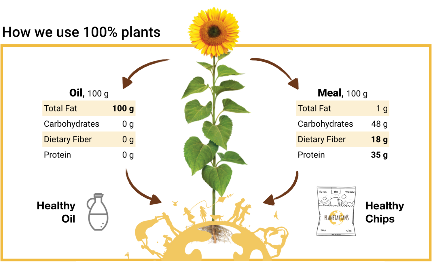 How+we+make+Sunflower+Chips+from+Sunflower+Meal.png
