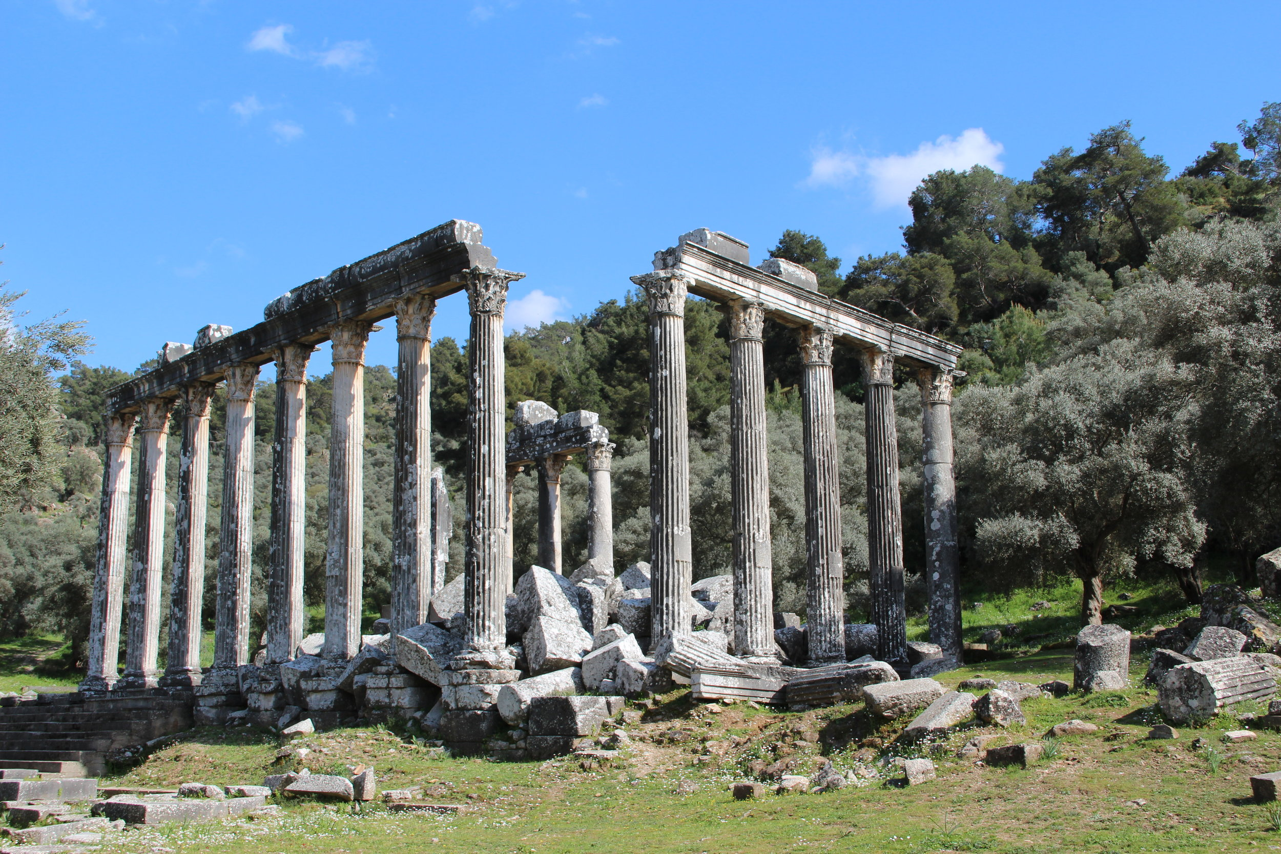 The temple of Zeus, Euromos - 2nd century BC