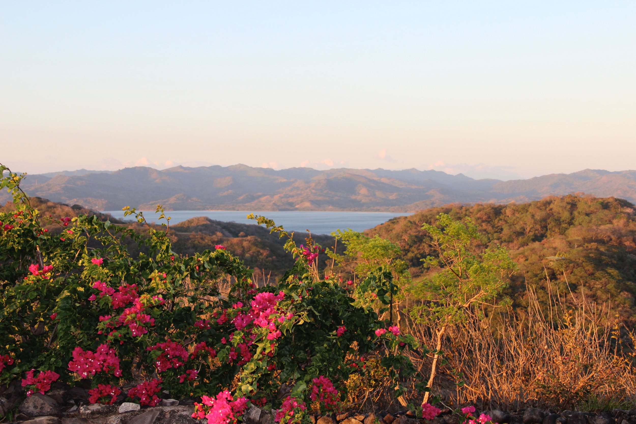 Looking North East over Baja Salinas towards Nicaragua where the guys kited every day - yup lots of bougainvillaea