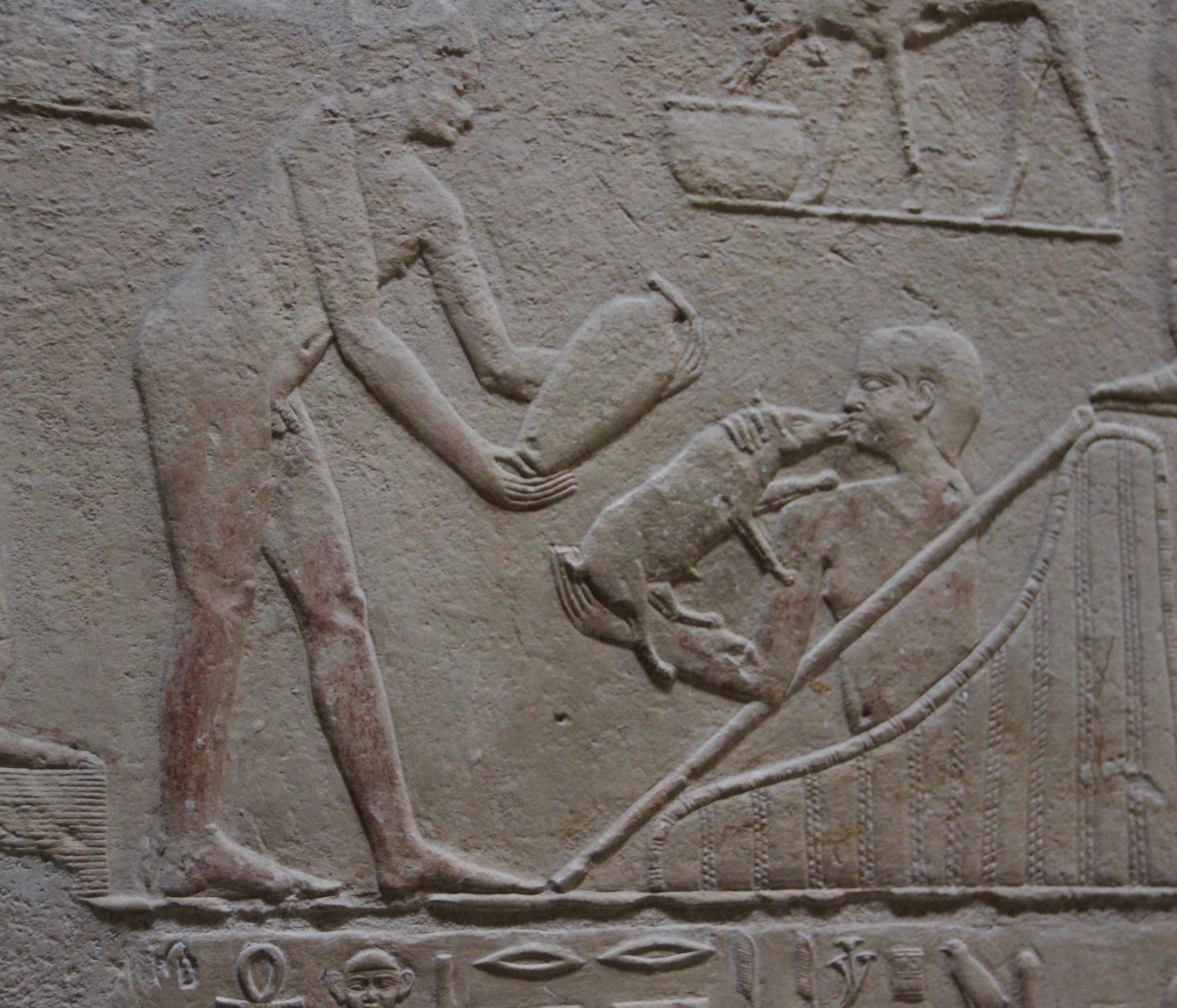 A farmer kissing his pig - 4750 years ago