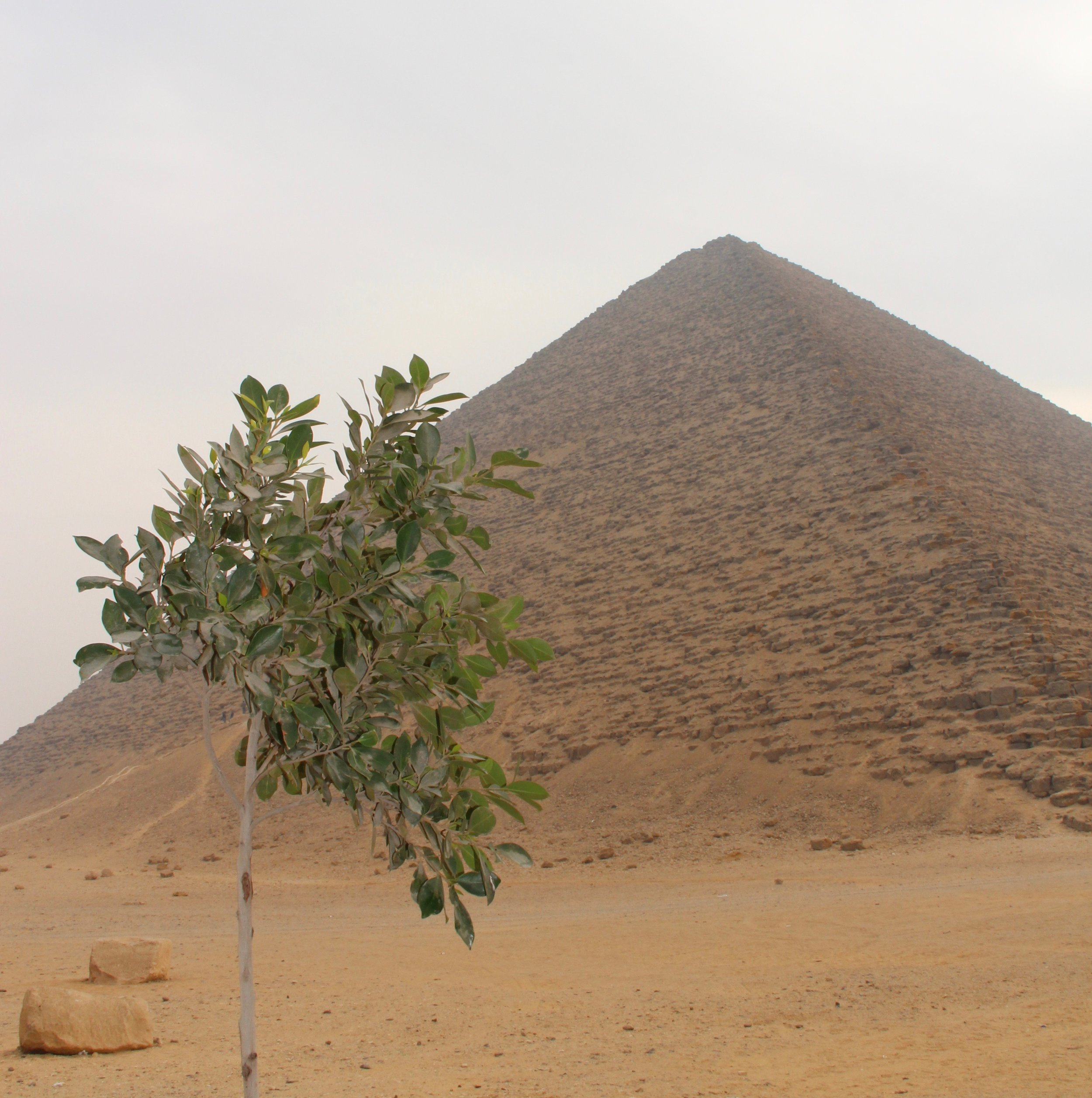 And then, at the Red Pyramid, a perfect pyramid.