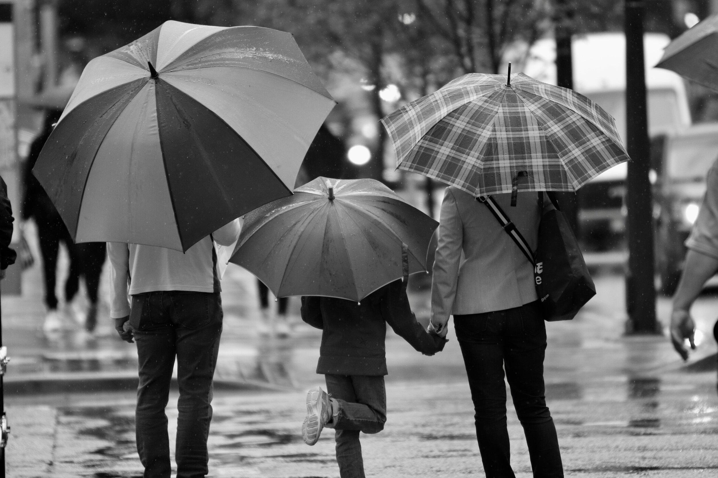 b:w umbrellas web page image.jpg