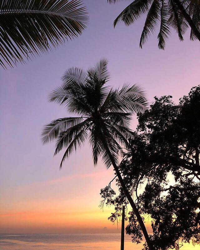 Getting up before the sunrise 🌅 . Getting ready for early swim 🏊♀️ . . #sunrise_sunset #sunrise_sunset_photogroup #bali🌴 #balivibes #balibeaches #yogajourney #yogatravel #naturelovers #palmbeach #views😍 #votd #potd📷 #travelholic #travelbook