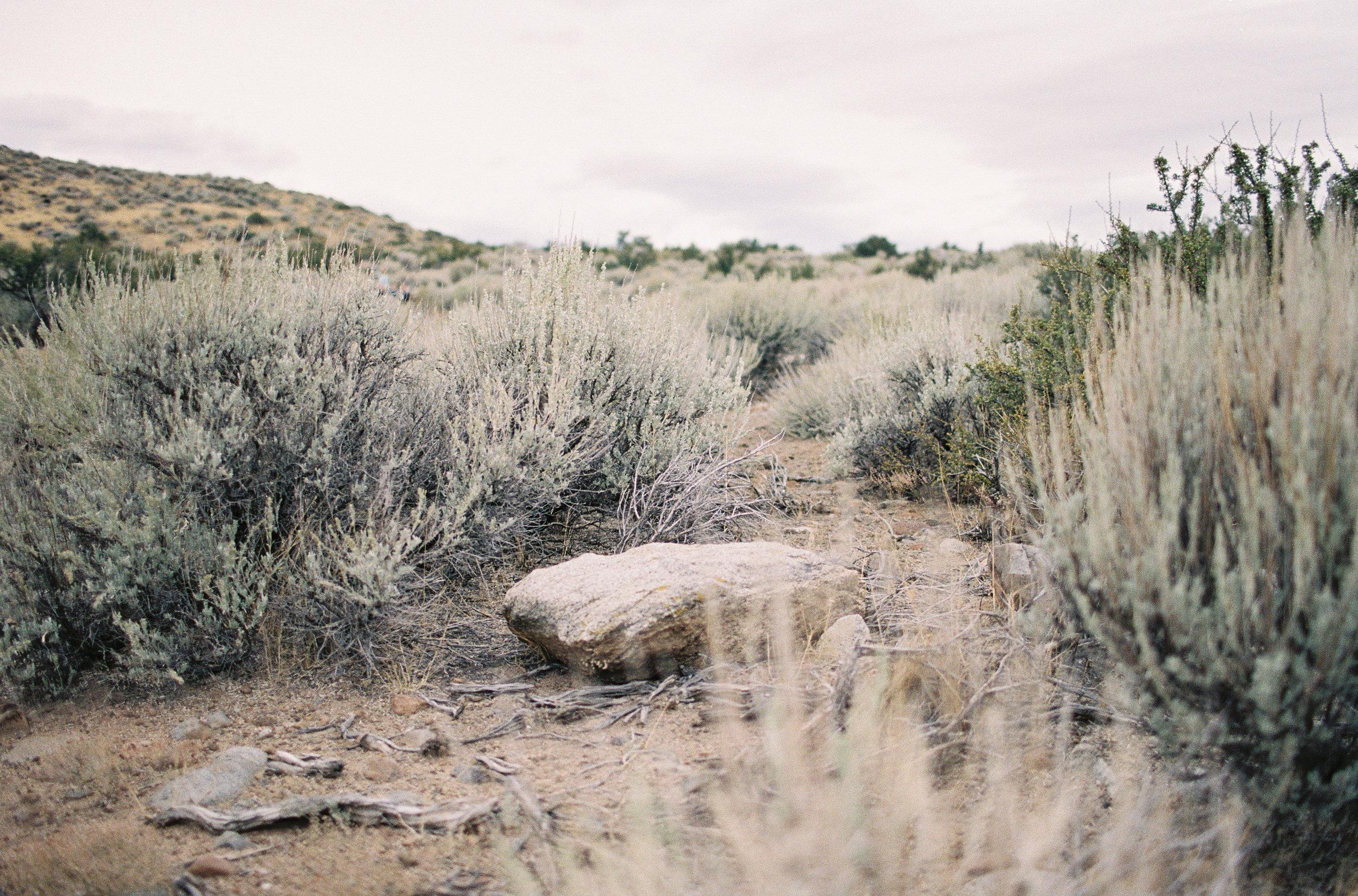 desert_inspiration012.jpg