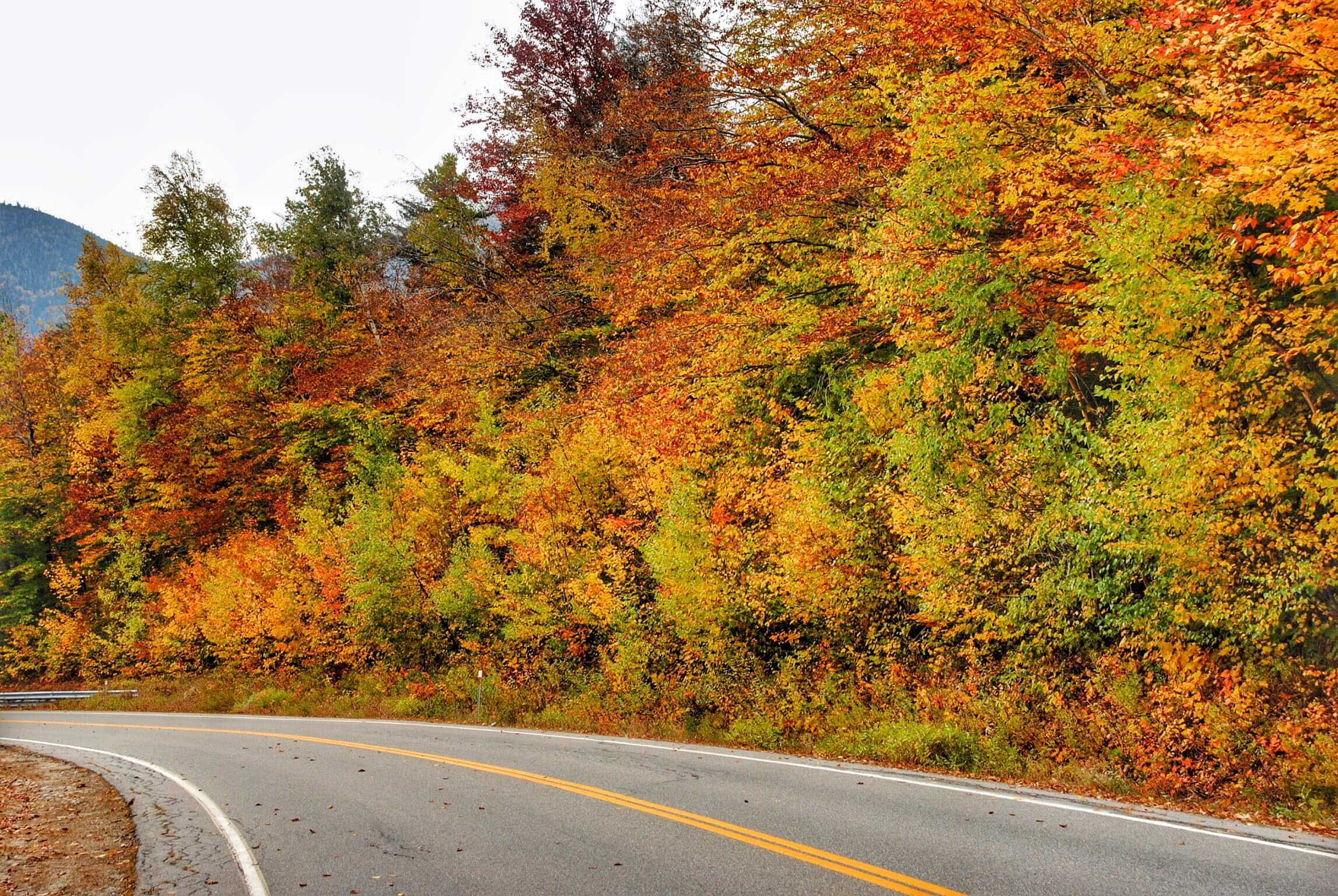 Fall Foliage on Kancamagus Highway.JPG
