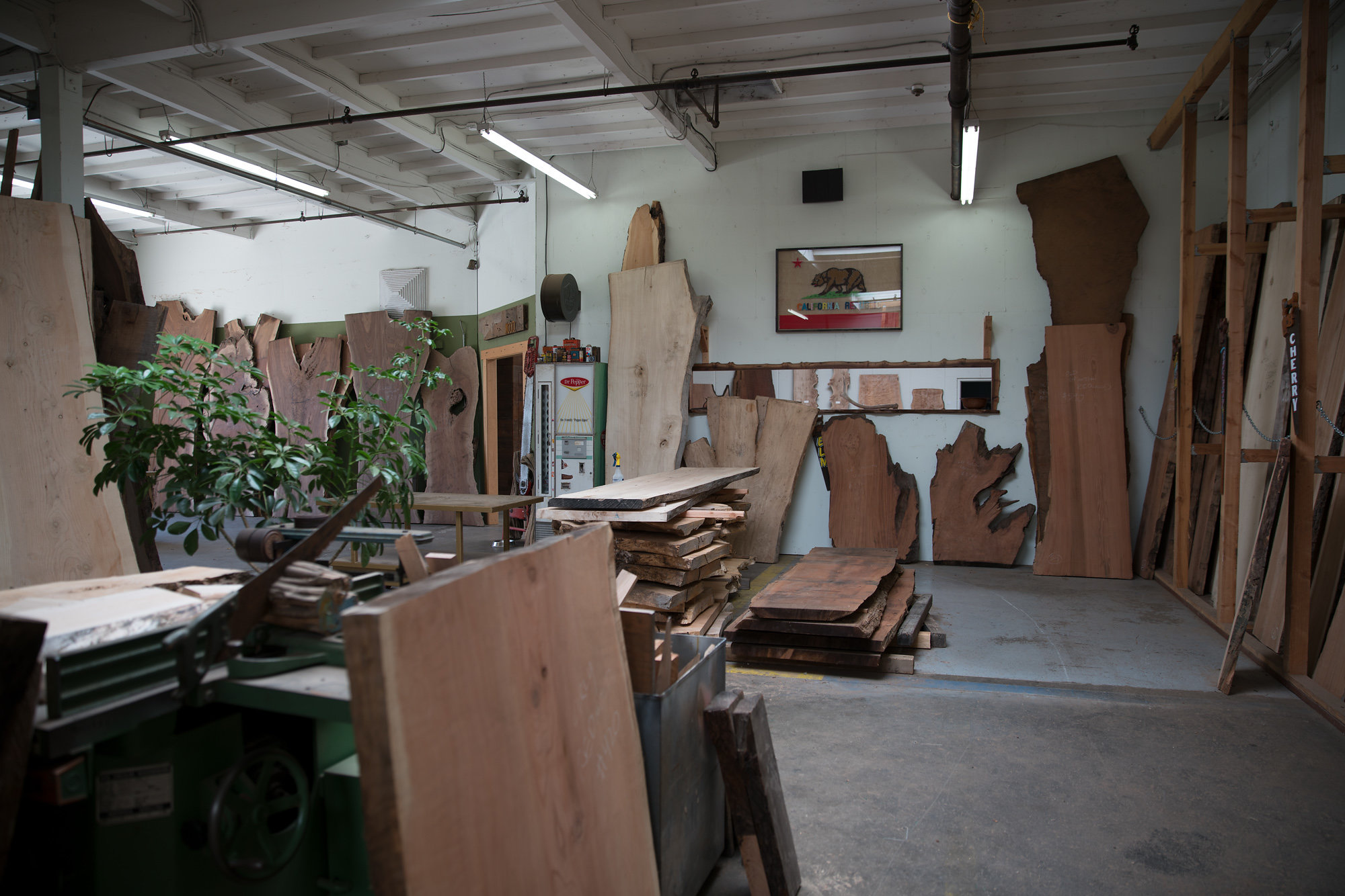 made lumber showroom in san diego showing live edge slabs