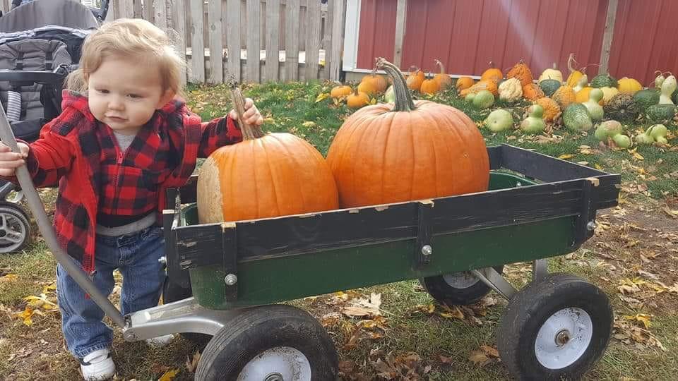 Pumpkin Patch 2018-04.jpg