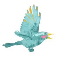 vogel 2.png
