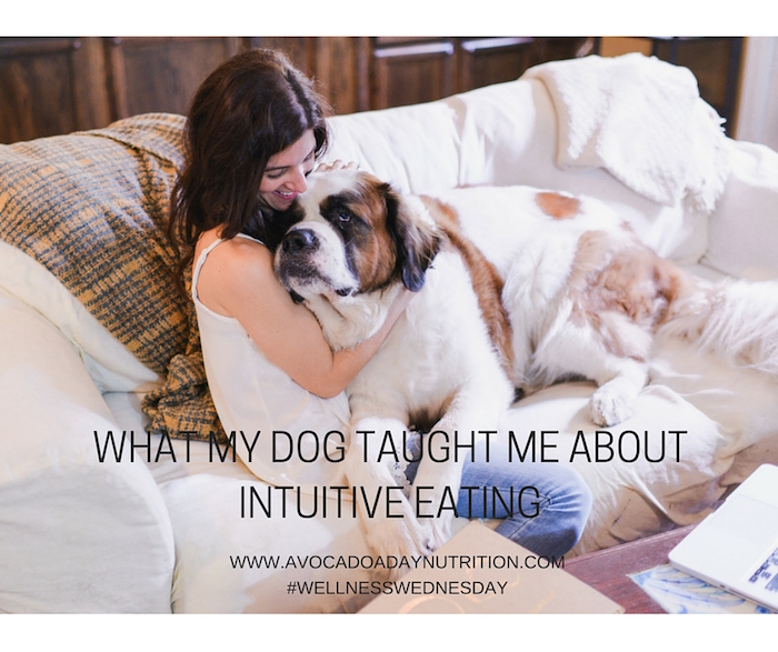 What my dog taught me about intuitive eating