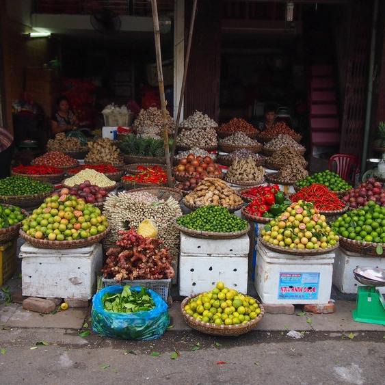 在越南的食物里