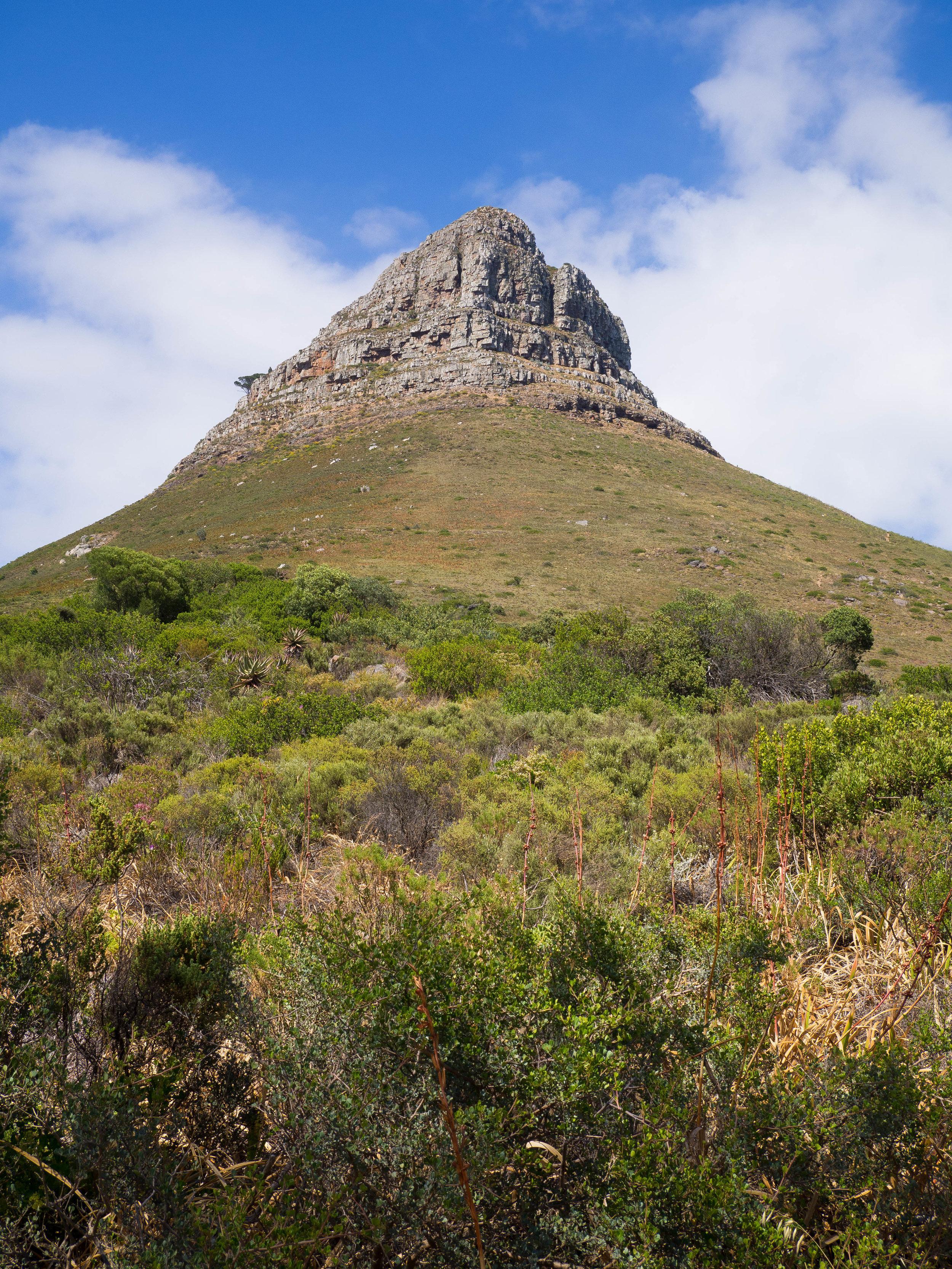 Cape Town Lion's Head