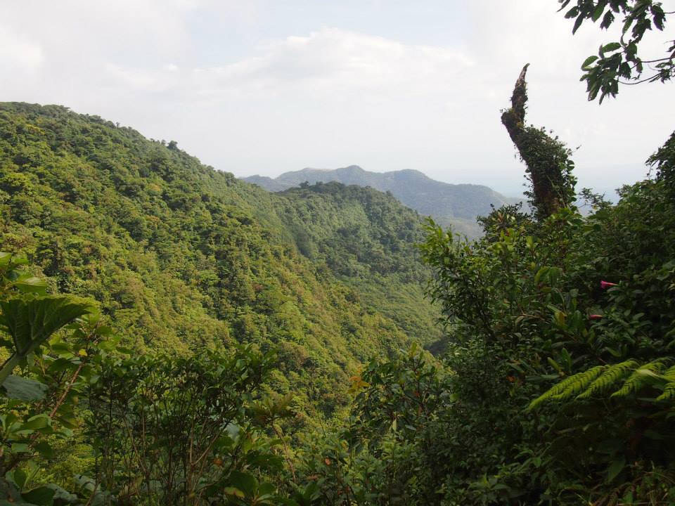 哥斯达黎加的旅行是由维斯特勒斯的海岸