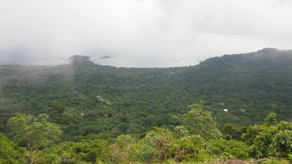 哥斯达黎加的旅行社: