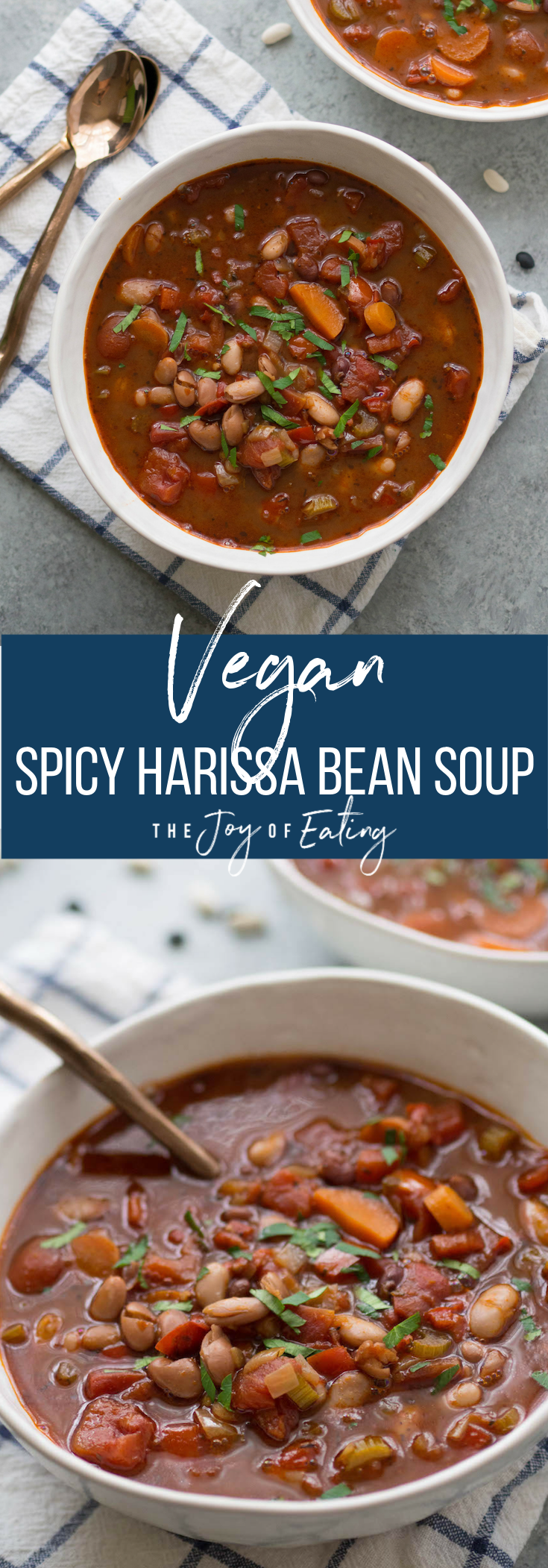 Spicy Harissa Bean Soup! This simple recipe uses up any leftover dry beans you have on hand! #vegan #vegetarian #soup #beansoup #budgetfriendly #healthy #driedbeans