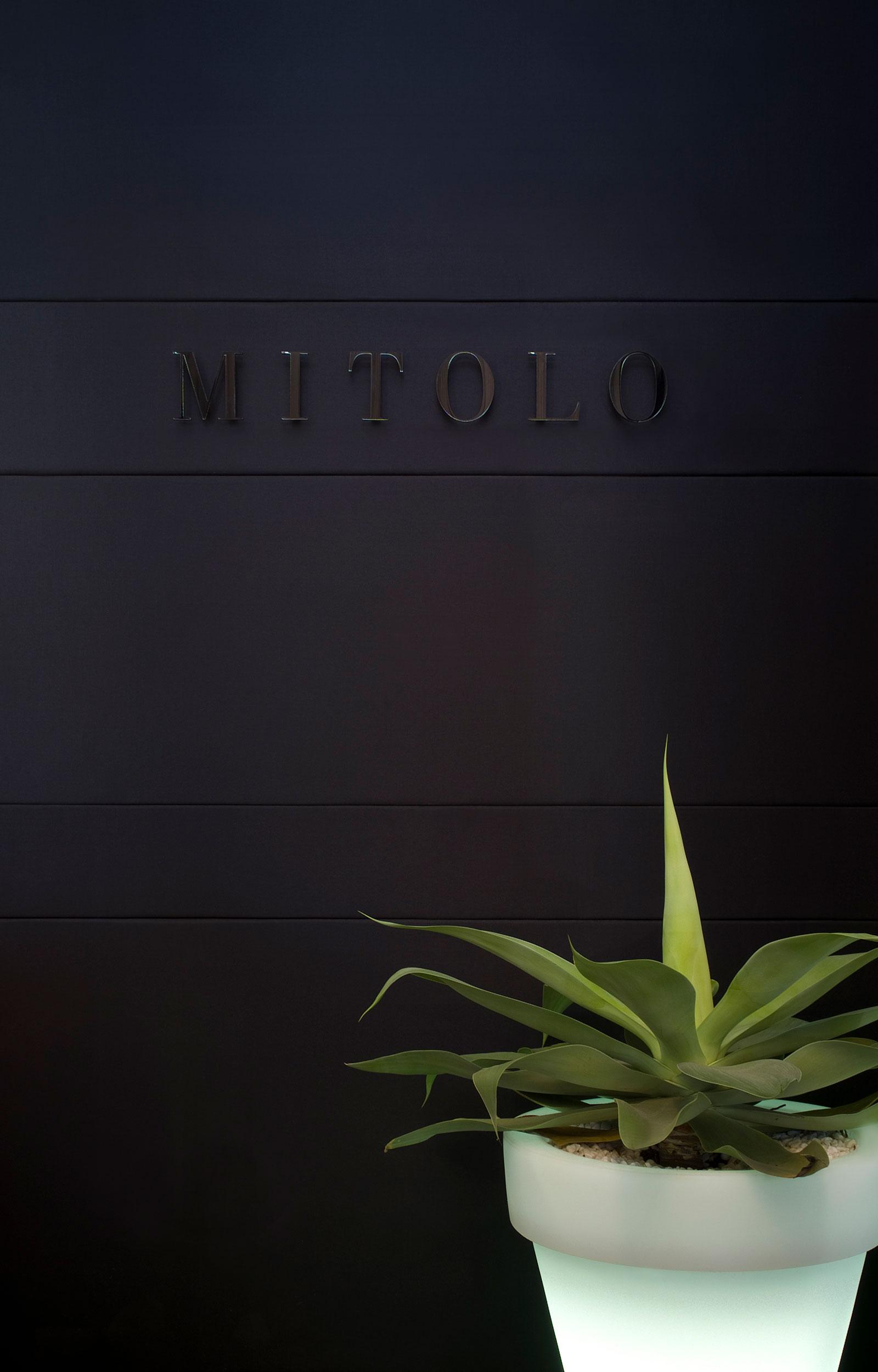 enoki-interior-mitolo-7.jpg