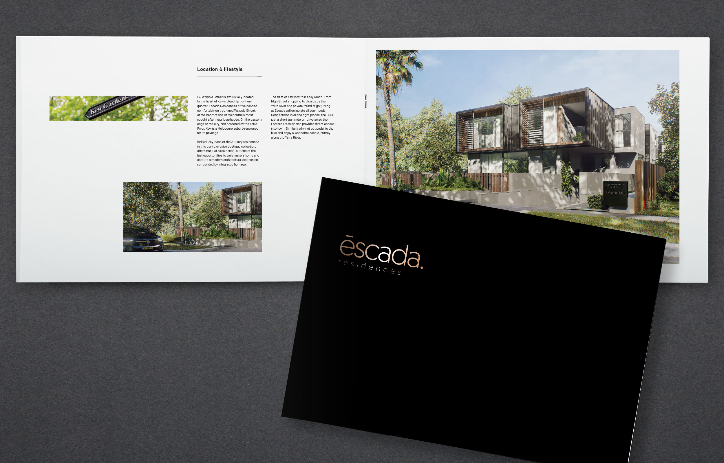 enoki-graphic-escada-6.jpg