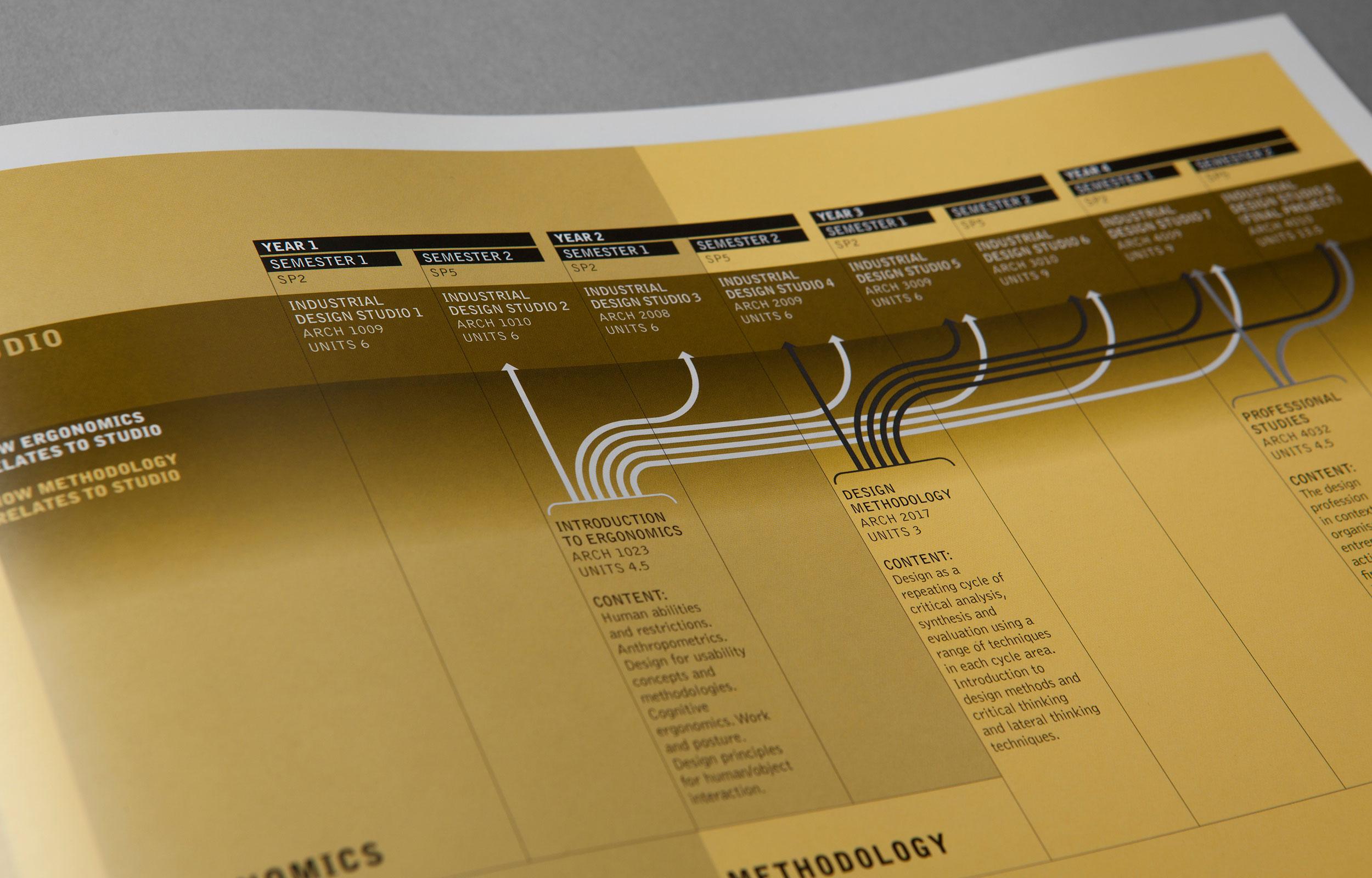 enoki-graphic-program-4.jpg