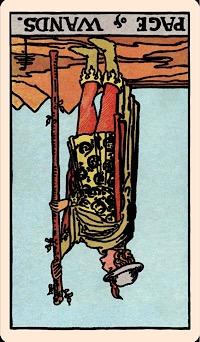 The Card of the Day: The Page of Wands (Terbalik) — Elliot Oracle - Pembacaan Kartu Tarot