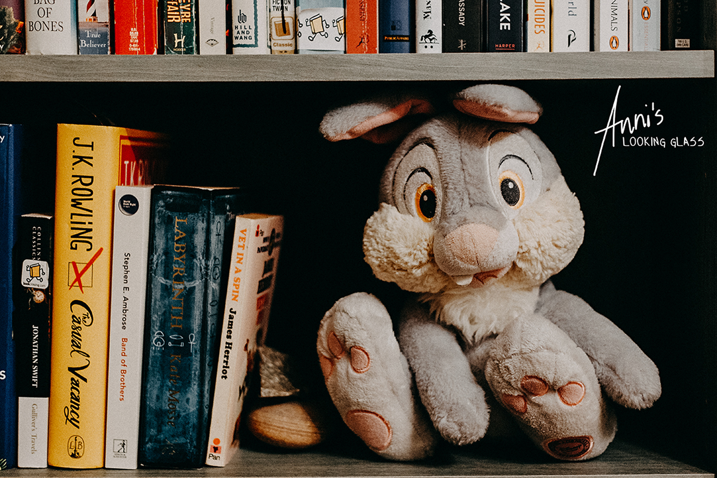 A stuffed toy of Thumper the rabbit sitting in a bookshelf