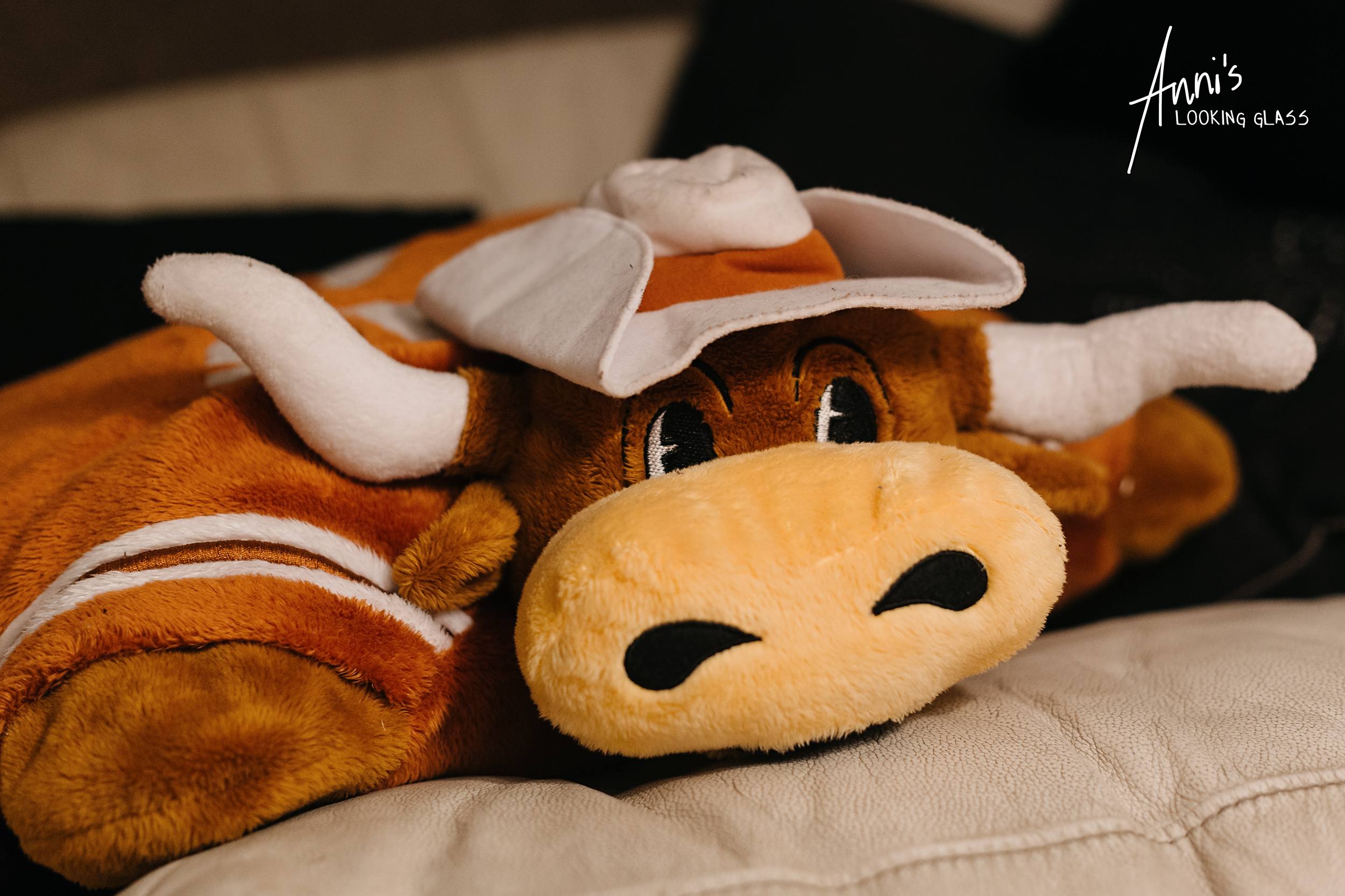 A pillow looking like a Texas Longhorn