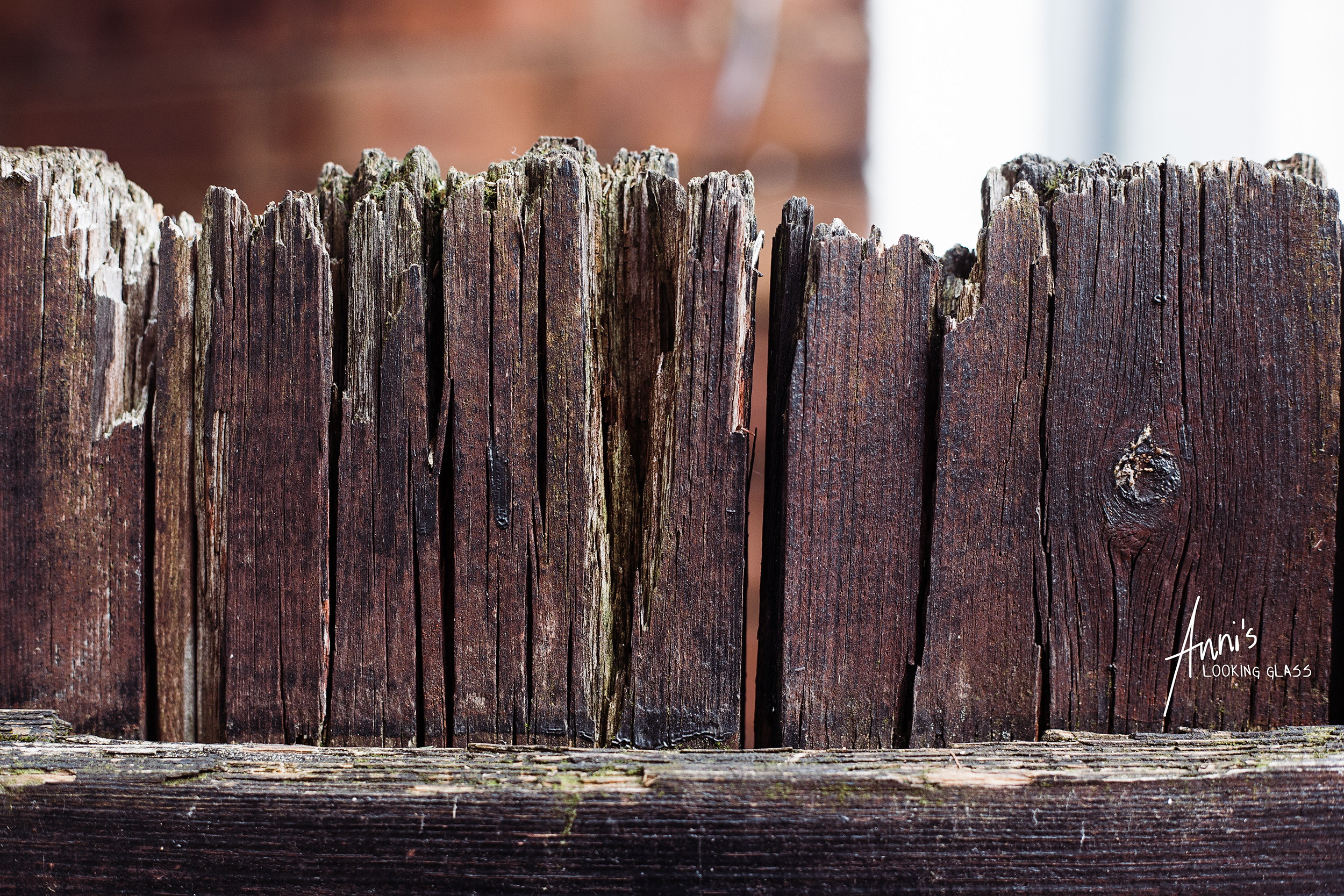 Close up of a wooden fence