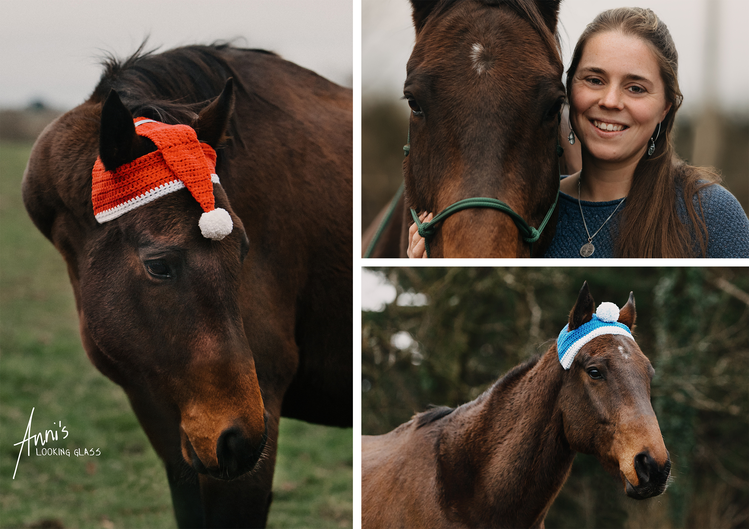 Equine photographer in Loughborough and Leicester: A collage with three images of a brown horse and a young girl with brown hair at Lee Valley Equestrian Centre in Co. Cork, Ireland. 12th March, 2019.