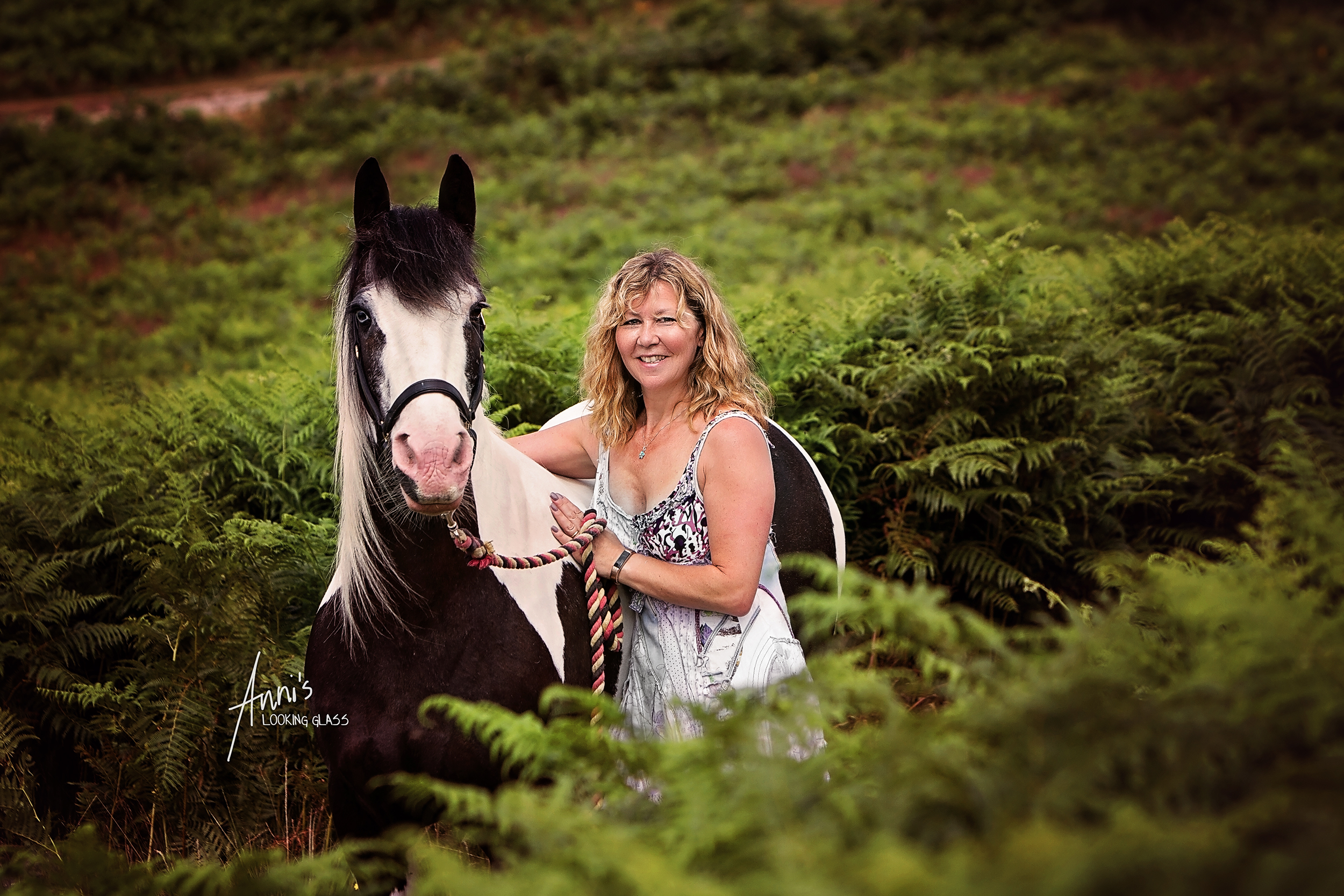 equine-photography-leicestershire-gypsy-cob.jpg