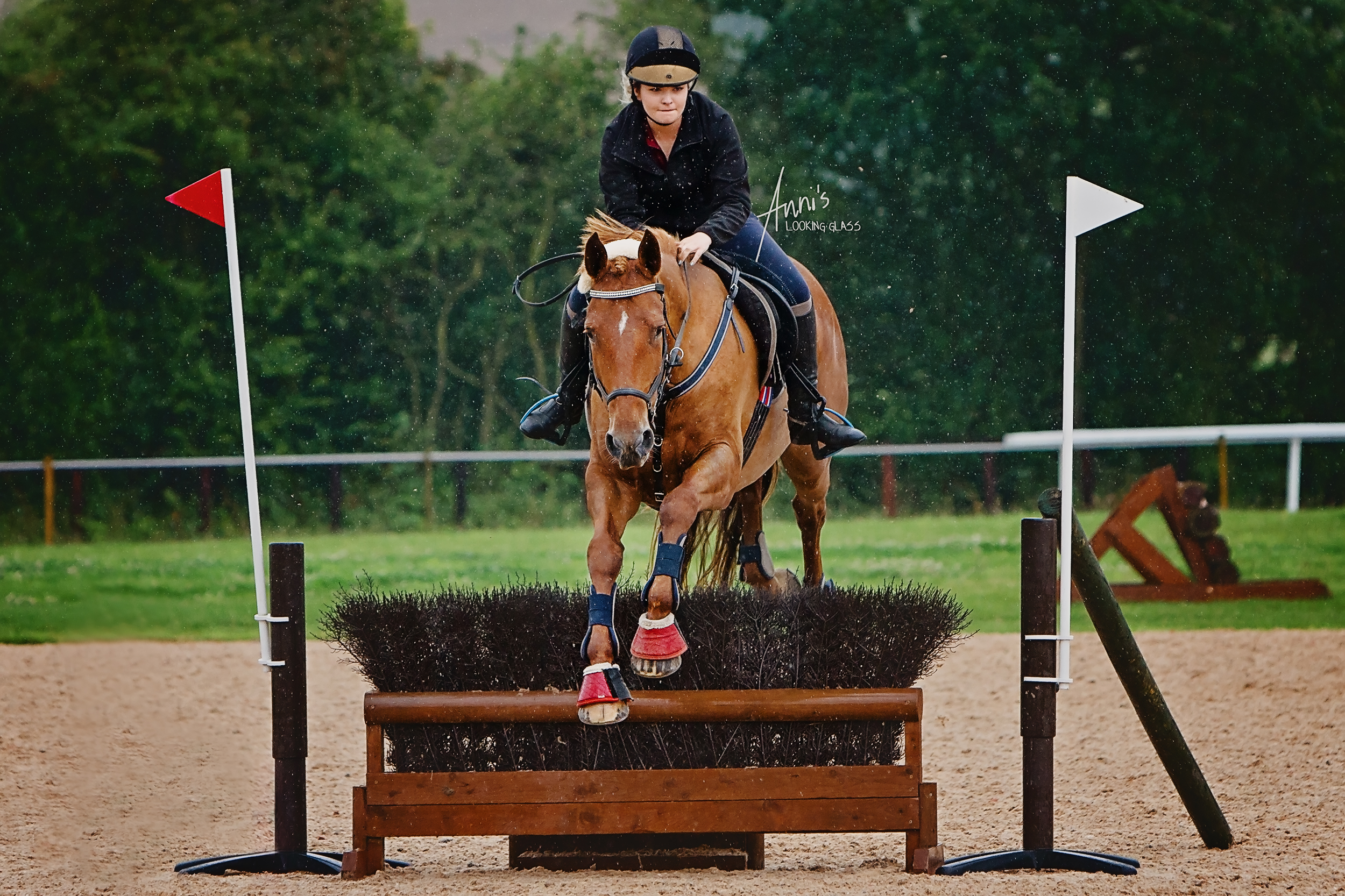 eventing-equine-horse-photographer-leicestershire.jpg