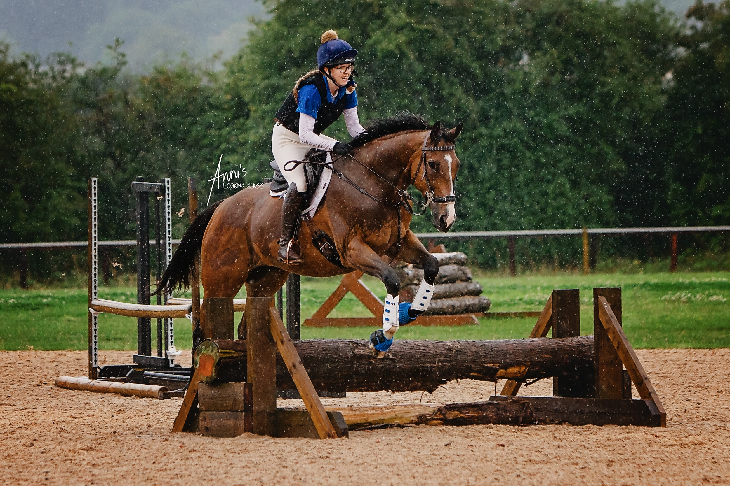 eventing-equine-horse-portrait-leicestershire.jpg
