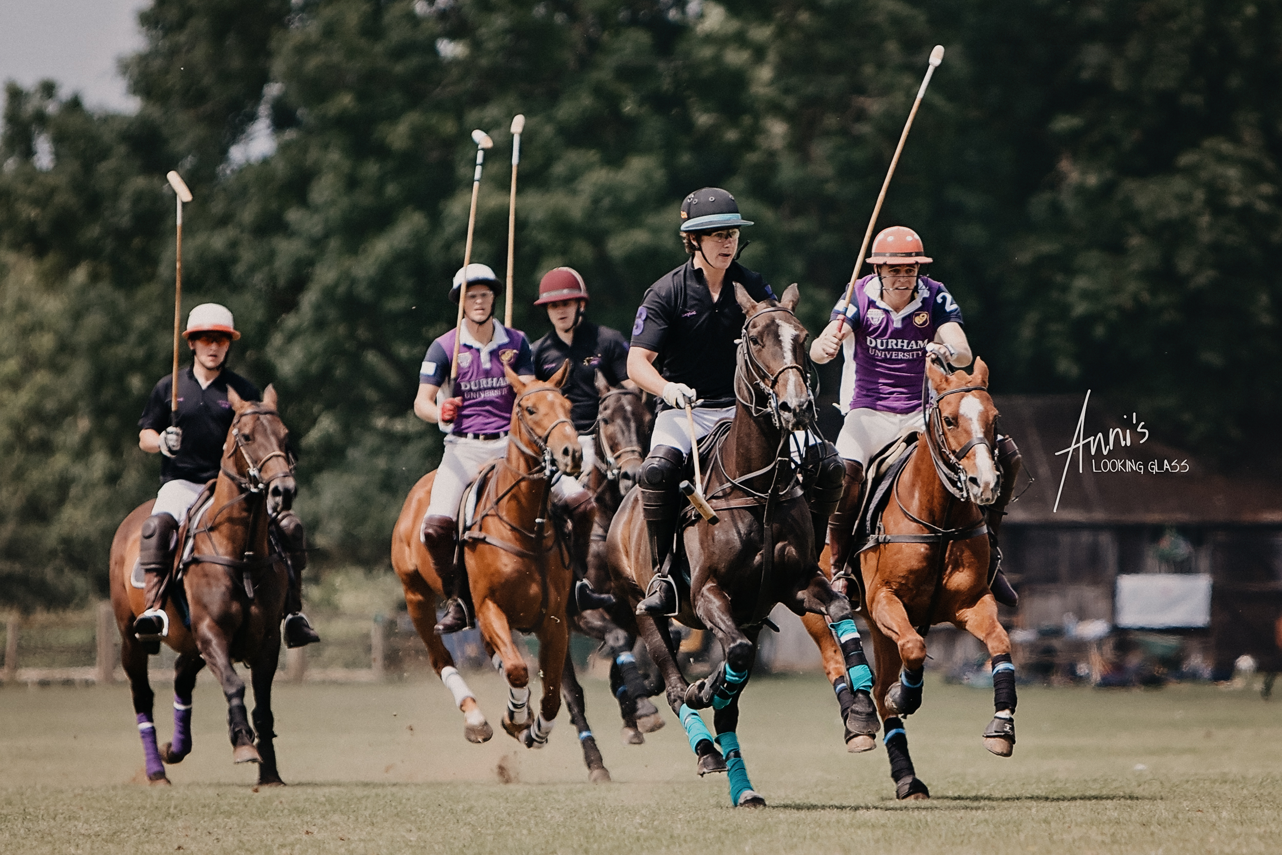 polo-equine-sports-photography-leicestershire.jpg