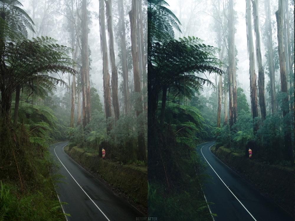 Antes y después.jpg
