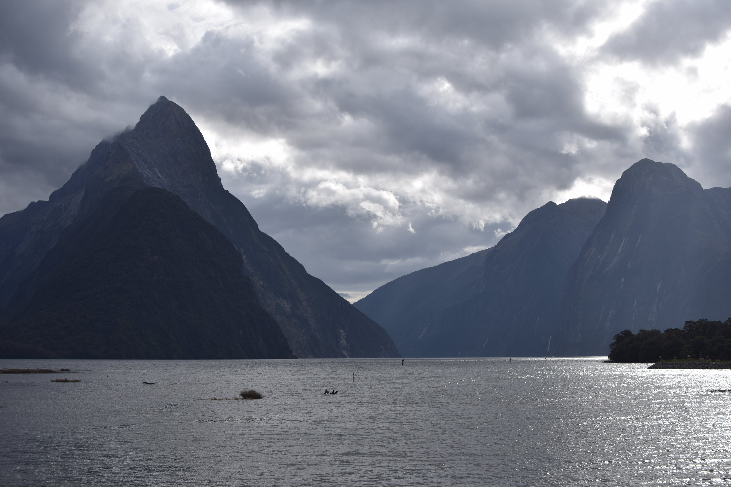 KANO Travel & Trip to Milford Sound | New Zealand