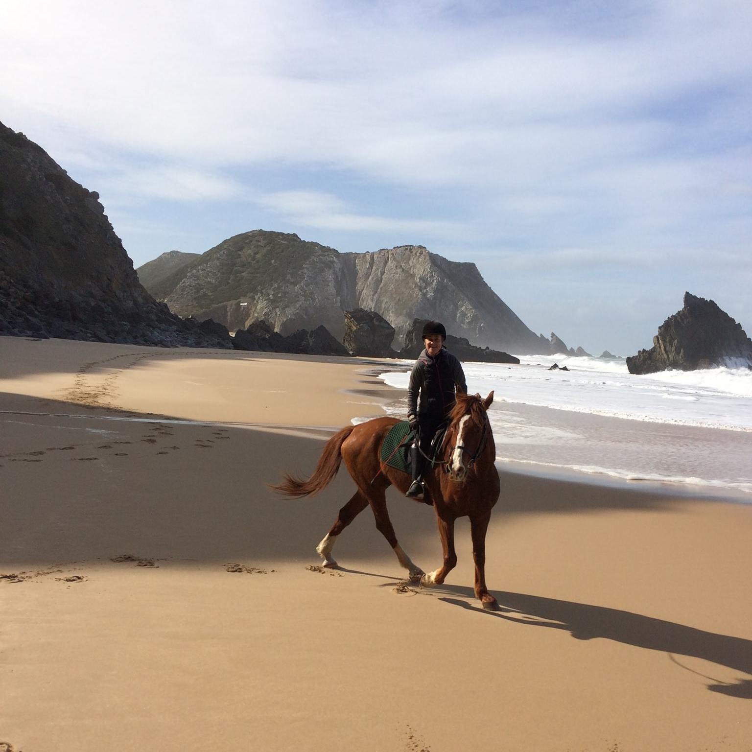 winter beach horse rides
