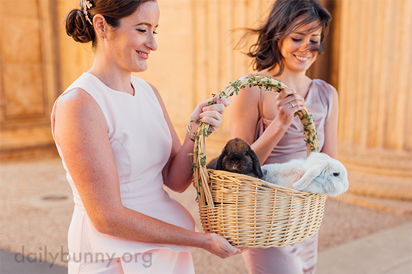 Bunnies Have a Special Place in Their Humans' Wedding