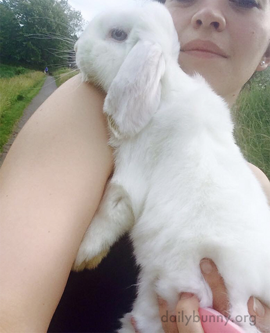 Bunny Steps Out for Some Fresh Air with His Human