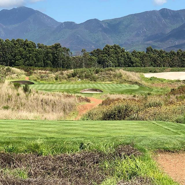 Are the Outeniqua mountains in Scotland or South Africa?  You could be forgiven for being deceived by this picture. The Links Course at Fancourt, George South Africa. Review online www.thelinksgolfer.com. #linksgolf #golf #glenmuir #thelinksfancourt #thelinksgolfer. #alzheimers