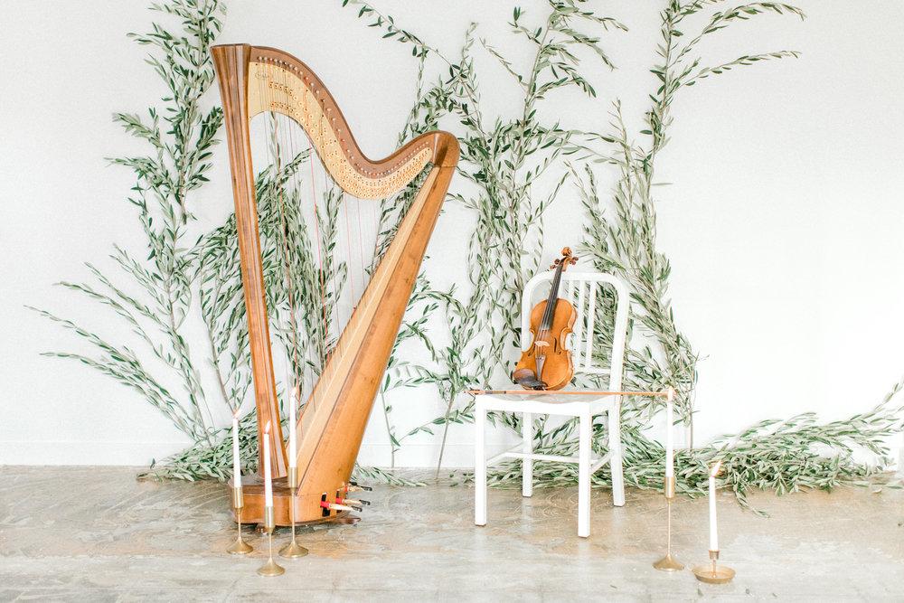 Tang Instrumentals - Music Samples