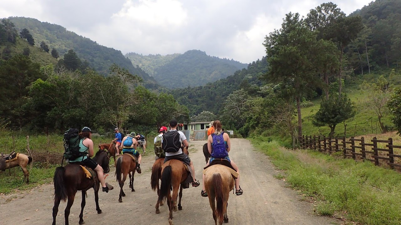 horses road.jpg