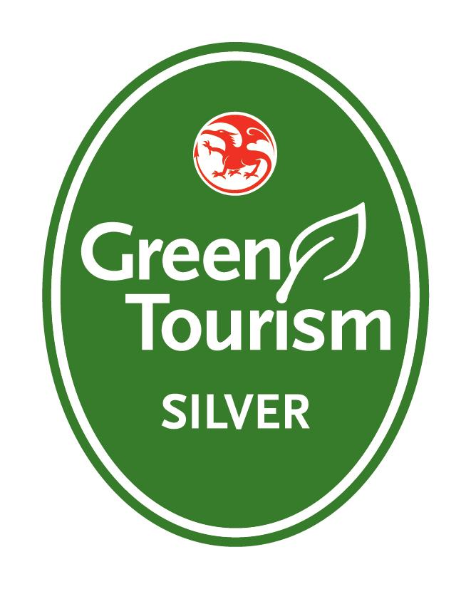 GT Wales Silver.jpg