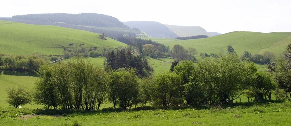 Graig Farm looking towards the Radnor Forest