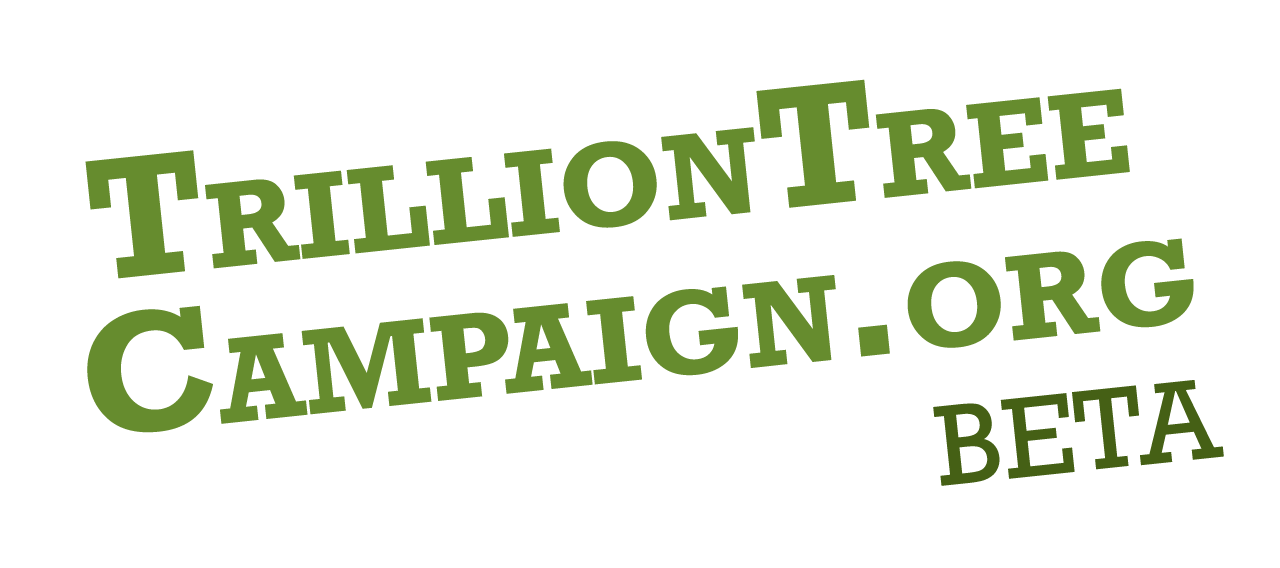 trillion tree campaign