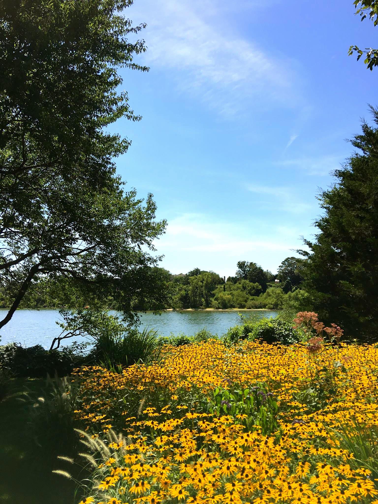Adamson Garden Tour - Lake_Oct 27 2016.jpg
