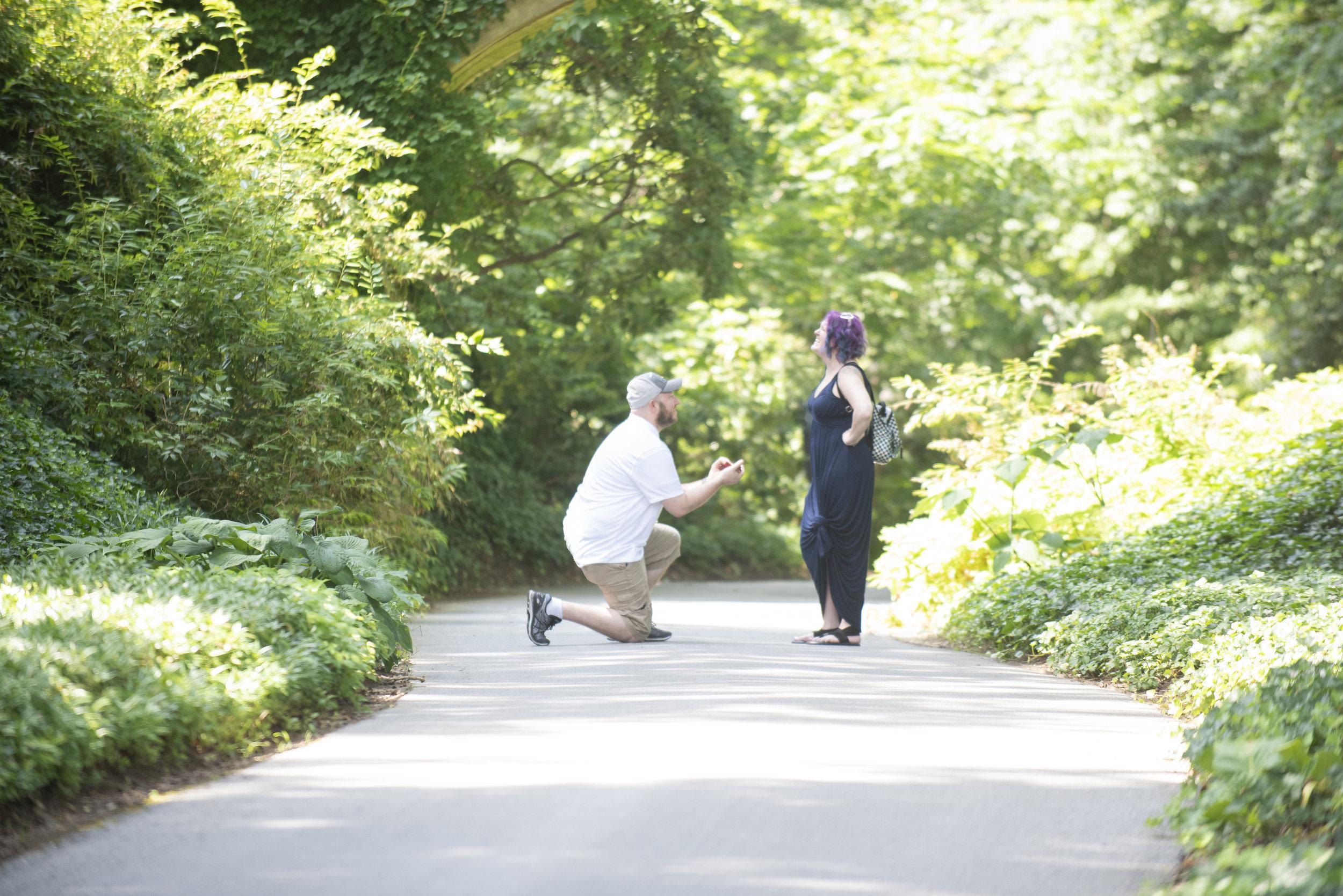 longwood gardens proposal photographer